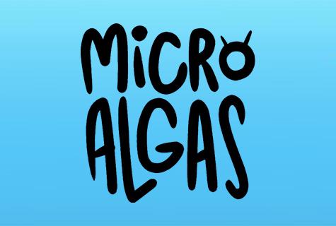 Micro Algas, el mundo oculto