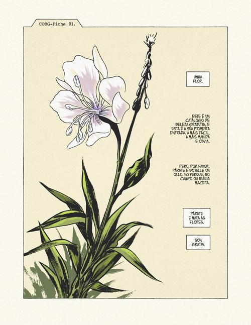 Komic Librería: Catálogo Oneroso de Beleza Gratuíta